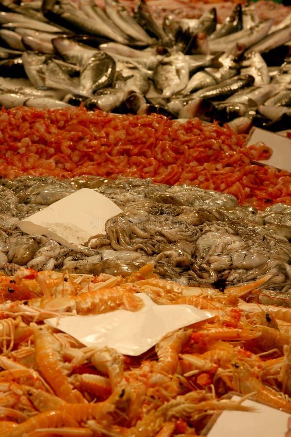 Camarones, pulpos y pescados fotografía de archivo
