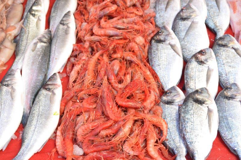 Camarones rojos grandes de las gambas del rey entre dos diversos pescados en una parada en el pavo de Antalya del mercado de pesc imagenes de archivo