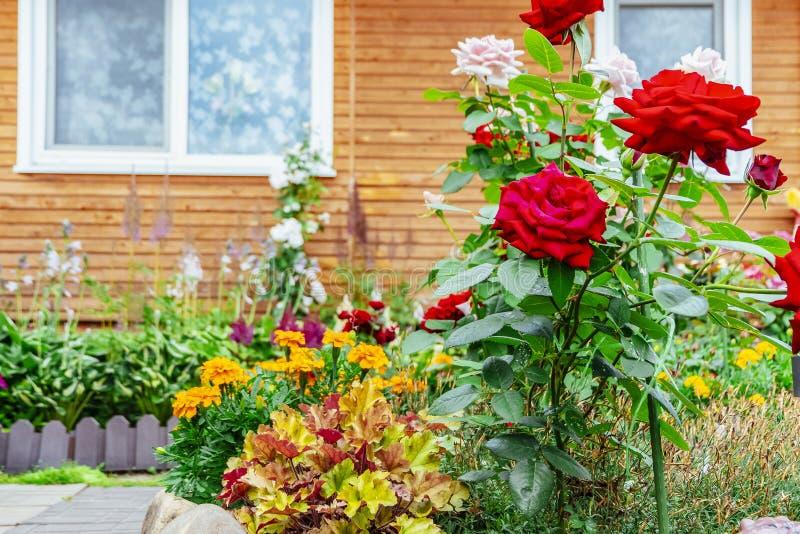 Camas de flor perto da casa Ajardinar do local imagens de stock royalty free