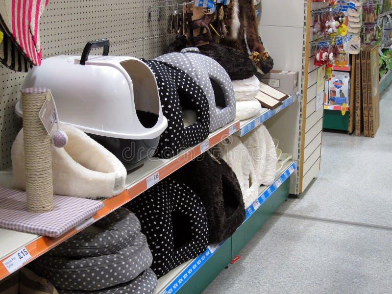 Camas de los gatos para la venta en una tienda del animal doméstico. fotografía de archivo libre de regalías