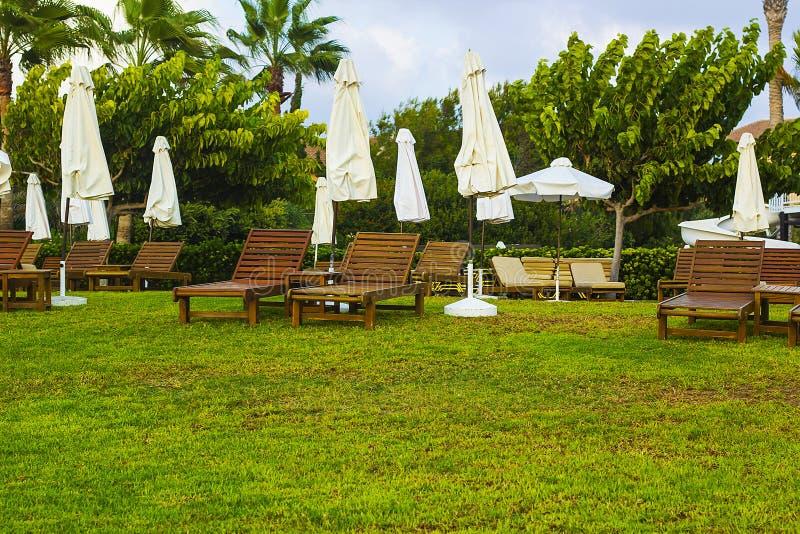 Camas de madera del sol y paraguas blancos en césped imagen de archivo