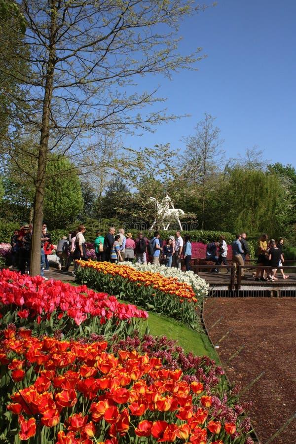 Camas de tulipa, jardins de Keukenhof, povos e estátua fotos de stock royalty free