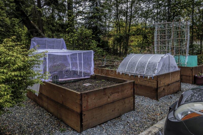 Camas y planta aumentadas que cultivan un huerto urbanas Protectorsn fotos de archivo libres de regalías
