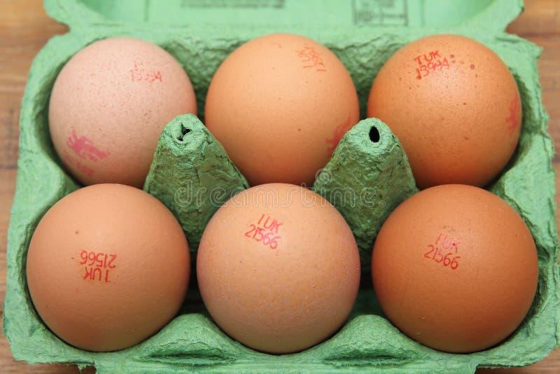 Camberley, het UK - 31 Dec 2016: Bruine eieren in groen karton met Britse Ei het Volgen Code en Lion Brand royalty-vrije stock foto's
