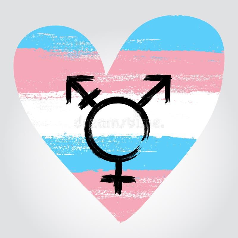 Cambie de sexo la bandera del orgullo en una forma de corazón con symbo del transexual fotos de archivo
