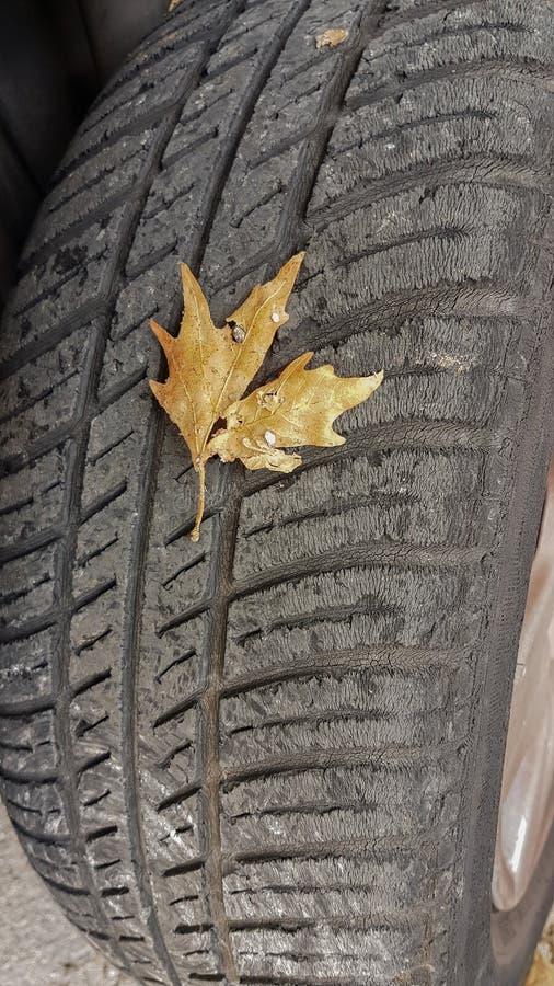 Cambio del otoño de los neumáticos fotos de archivo libres de regalías