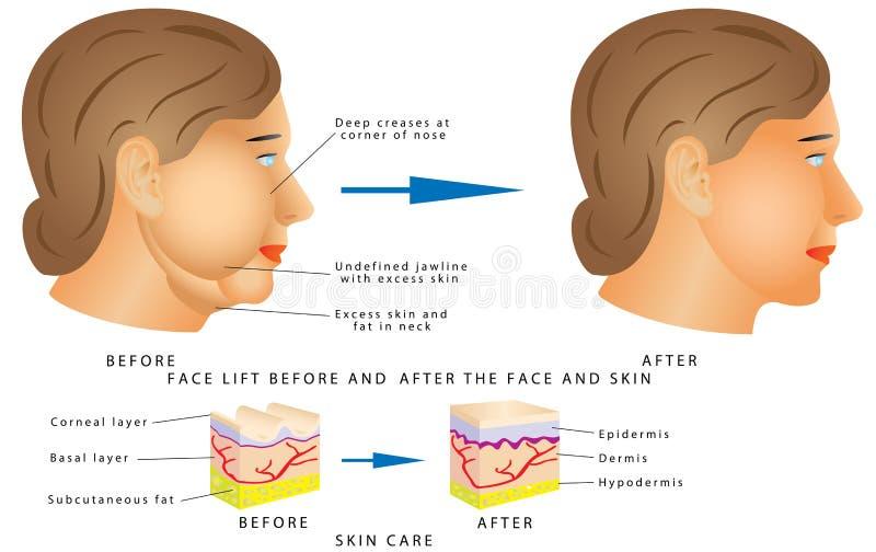 Cambios de la cara del envejecimiento libre illustration