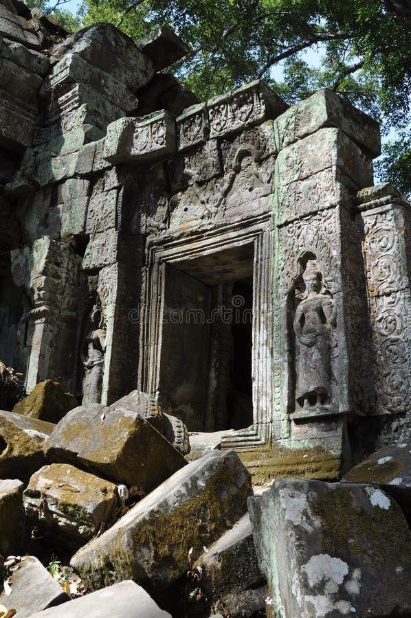 Cambodia - Detail of Ta Prohm temple stock photo