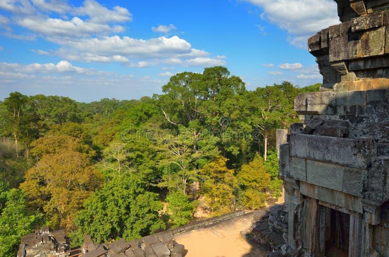 Download Cambodia jungle stock image. Image of civilization, prohm - 22970367