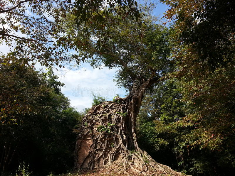 cambodia Sambor Prei Kuk tempel Kampong Thom Province Kampong Thom City royaltyfria bilder