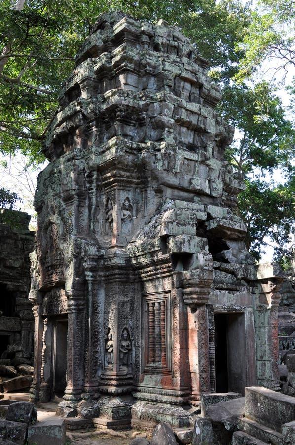 Cambodia - Ta Prohm temple stock photos