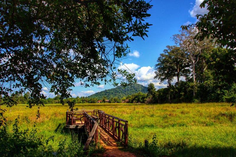 Cambodja underbart landskap arkivbilder