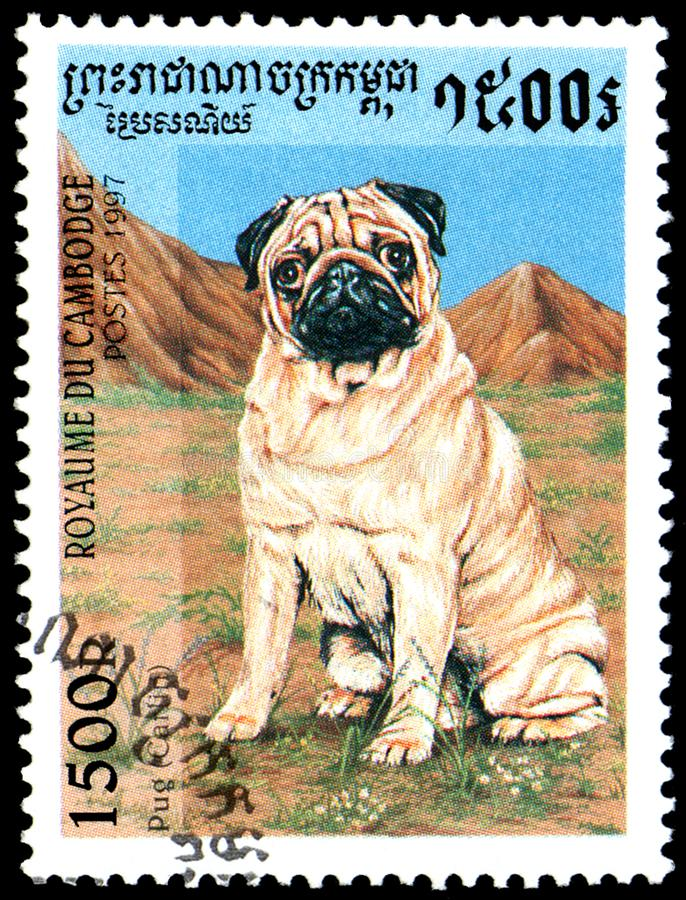 CAMBOJA - CERCA DE 1997: o selo postal, impresso em Camboja, mostra um Pug Carlin imagens de stock