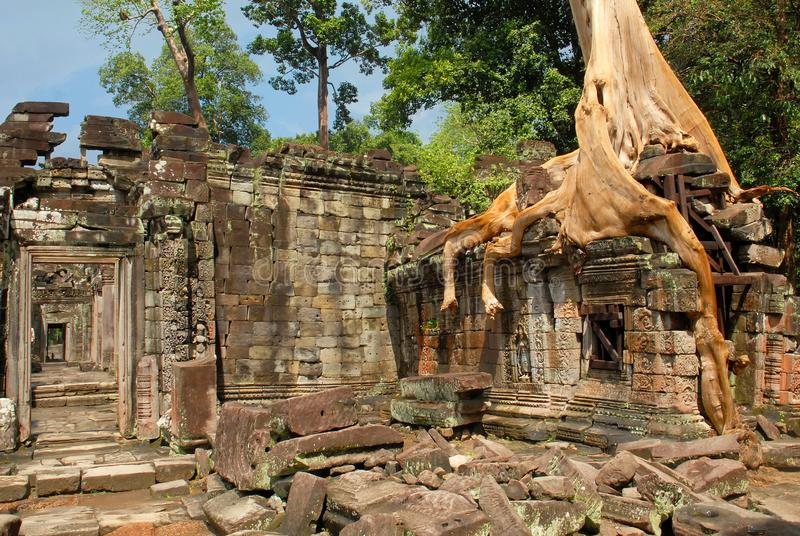 Camboja, Siem Reap, Angkor, Preah Khan, templo budista hindu fotografia de stock royalty free