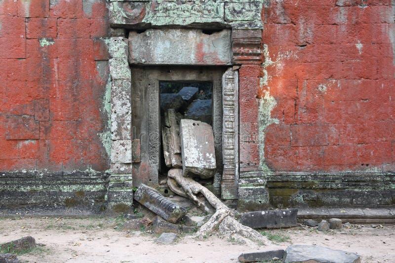 Camboya - TA Prohm foto de archivo