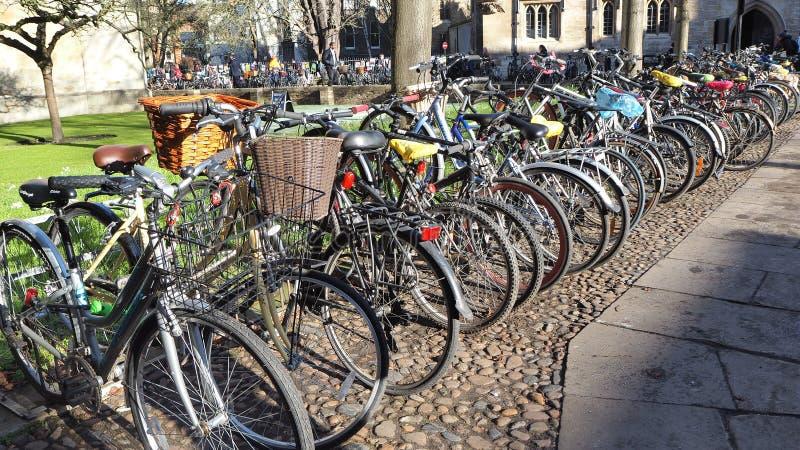 cambridge Anglii Grupa bicykle parkował na zewnątrz uniwersyteta zdjęcia royalty free