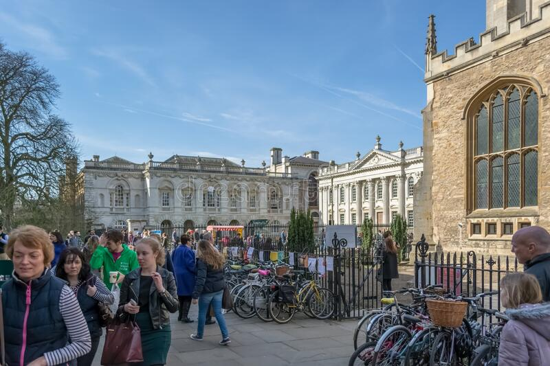 View at the Plaza Kings Parade street on Cambridge downtown, Great St Marys Church and Senate house passage building, bikes. Cambridge, England / United Kingdom royalty free stock photos