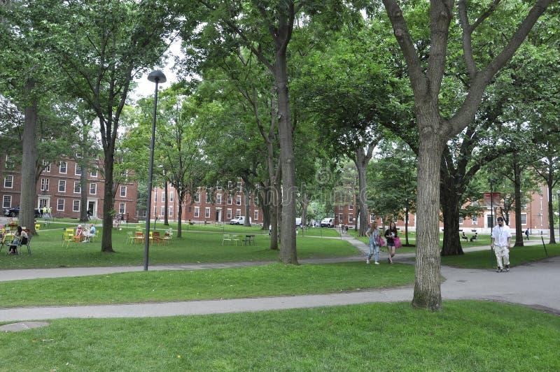 Cambridge mA, el 30 de junio: Yarda del campus de Harvard en el estado de Cambridge Massachusettes de los E.E.U.U. foto de archivo