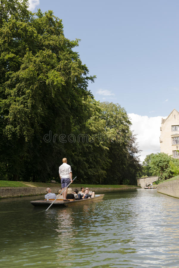 CAMBRIDGE, UK - AUGUST 18: Professional punter in busy River Cam. With tree lined bank to one side and bridge in the far horizon. August 18, 2013 in Cambridge royalty free stock images