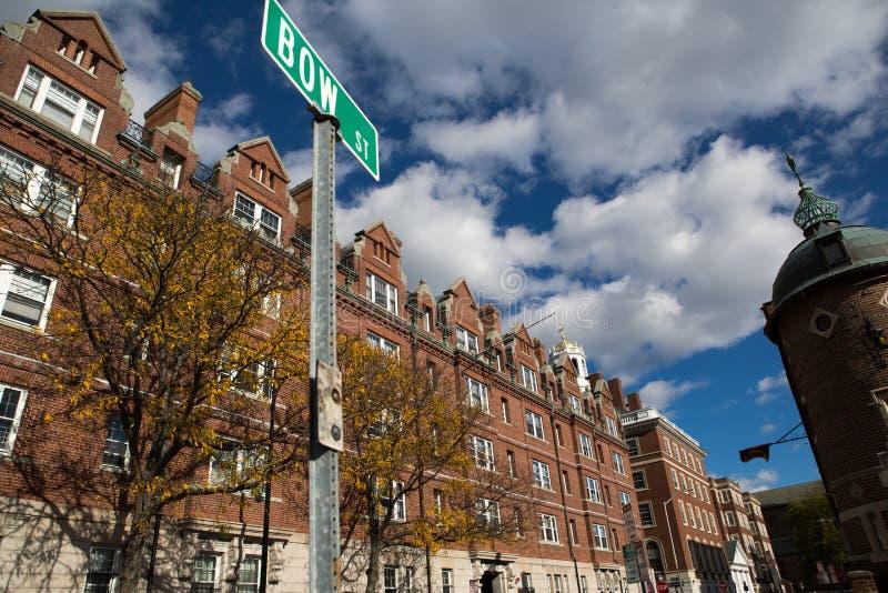 cambrige Massachusetts ulica fotografia royalty free