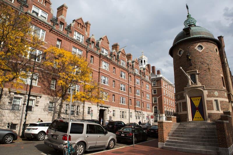 cambrige Massachusetts ulica zdjęcia royalty free