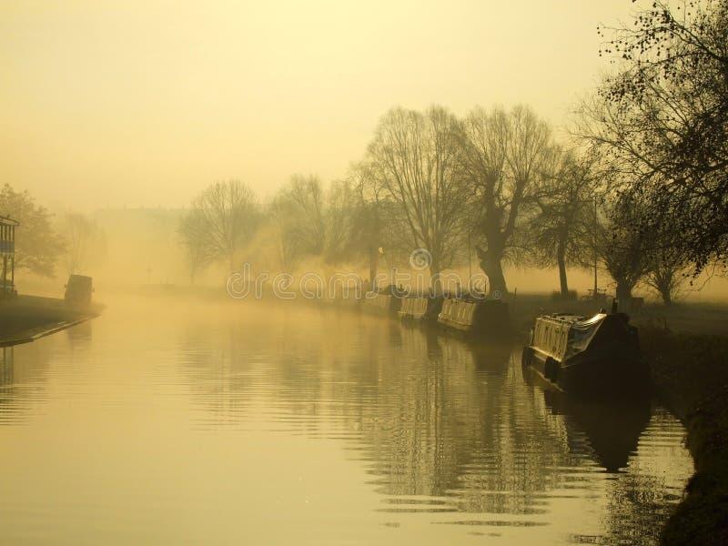 Came na manhã do inverno, Cambridge do rio fotos de stock