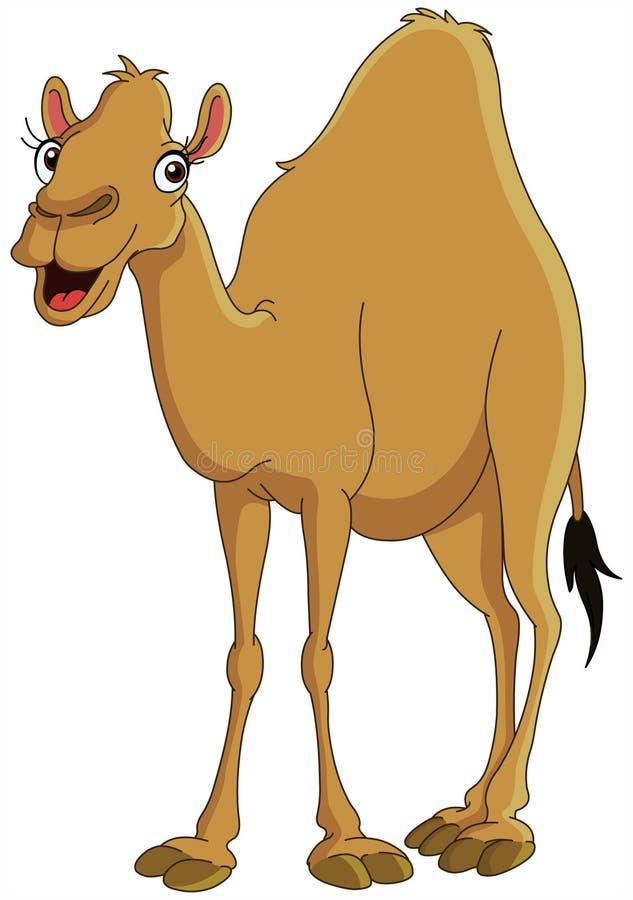 Free Camel Stock Photo - 13969210