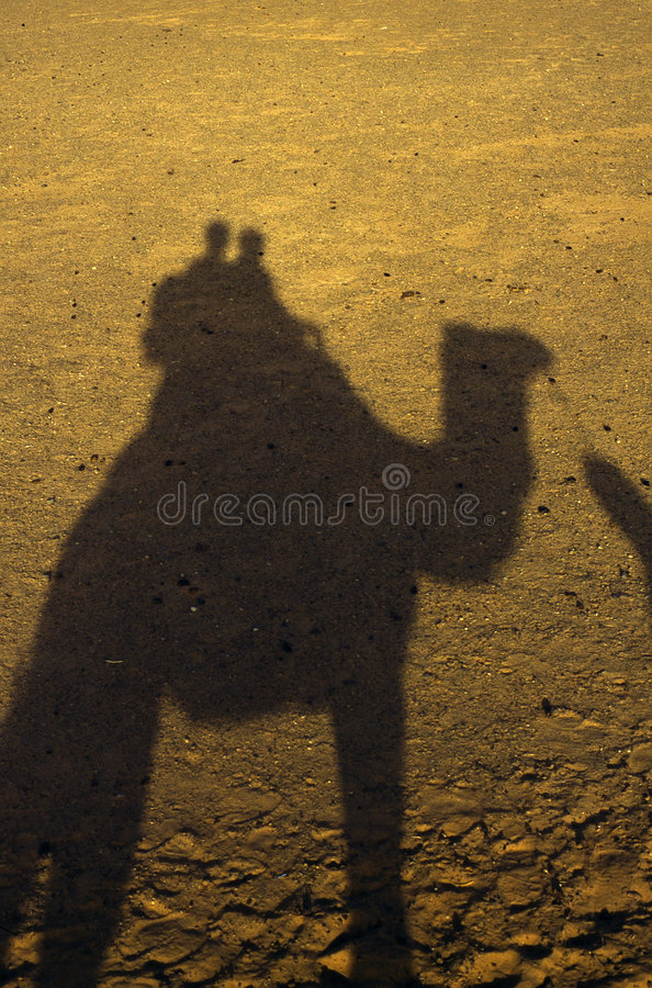 Download Camel Stock Photography - Image: 3689892