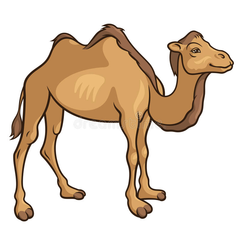 Camel_2 διανυσματική απεικόνιση