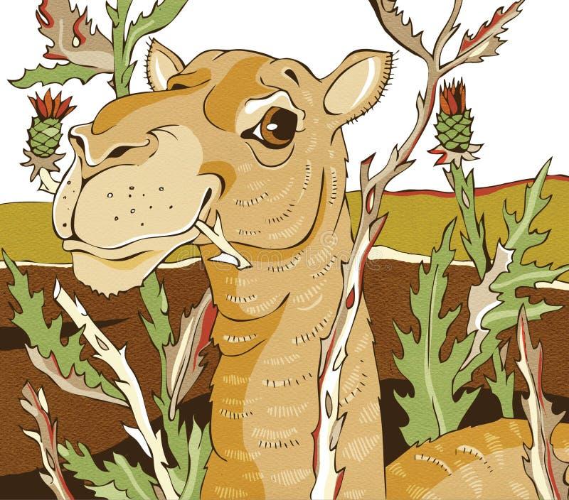Download Camel stock illustration. Illustration of plant, egypt - 30713905