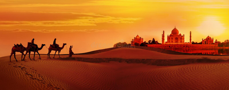 Camel caravan going through the desert.Taj Mahal during sunset. Panoramic view of Taj Mahal during sunset. Camel caravan going through the desert. India stock images