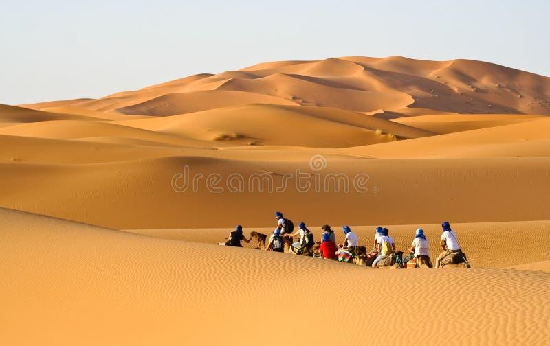 Download Camel Caravan Going Through The Sand Dunes Stock Image - Image: 11386557