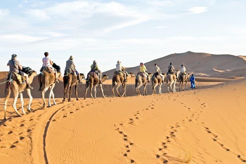 Download Camel Caravan Going Through The Sand Dunes In The Sahara Desert, Editorial Image - Image: 38290890