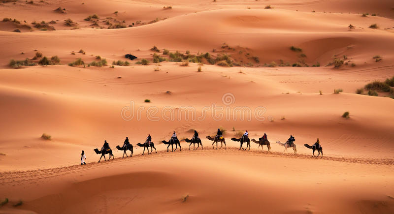 Download Camel caravan editorial stock image. Image of dunes, berber - 39883479