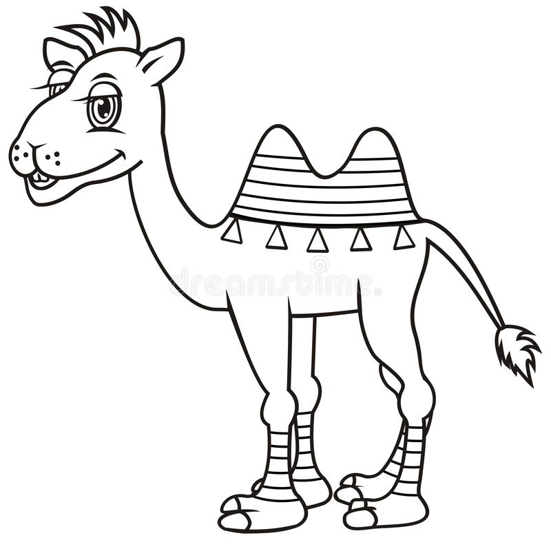 Camel, coloring book stock illustration