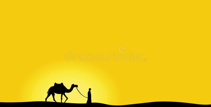 Camel in the day royalty free stock image
