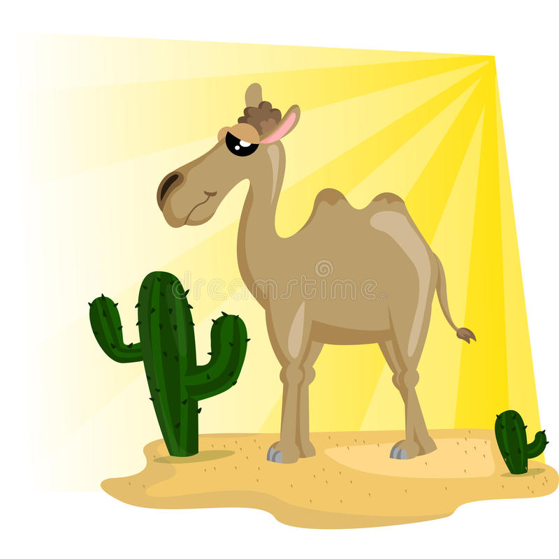 Camel stock illustration