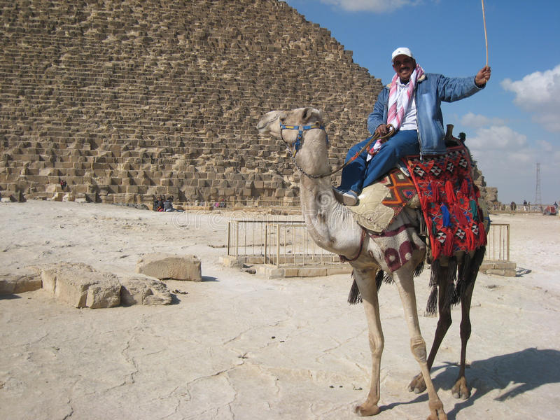 Camel driver at the piramids of Gizeh. Cairo. Egypt stock photo