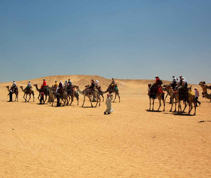 Camel Expedition in Egypt stock image