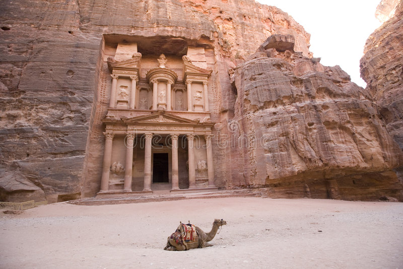 Camel in front of Treasury Petra Jordan royalty free stock images