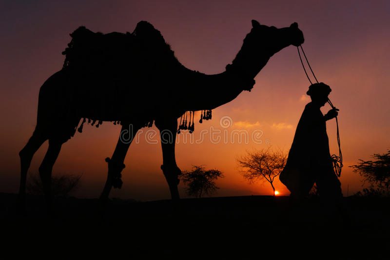 Camel guard in Puskhar, India. A silhouette of the vibrant sunset with the camel guard in puskhar, india. , city, cold, fortl, horizontal, jaipur, lights, orange royalty free stock photo