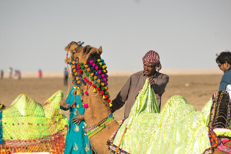 Camel herder owner stands near colorfully decorated camel in Gujarat India stock photo