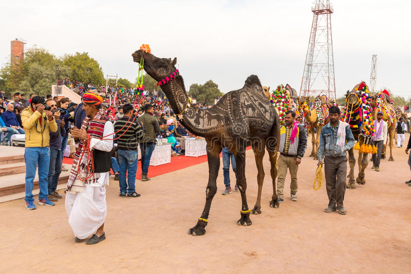 Camel procession stock images