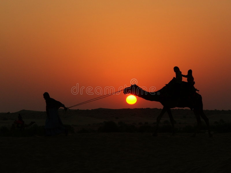 Camel ride 1 stock image