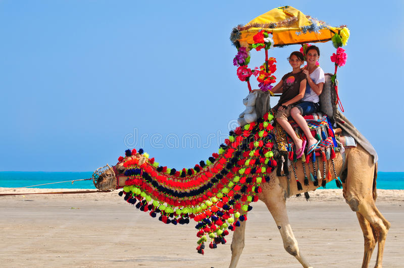 Camel Ride. Two young schoolgirls having a grand adventure on a brightly decorated camel in the middle east stock images