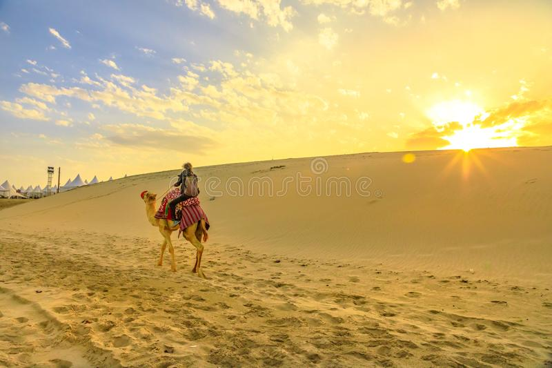 Camel ride in desert safari royalty free stock image