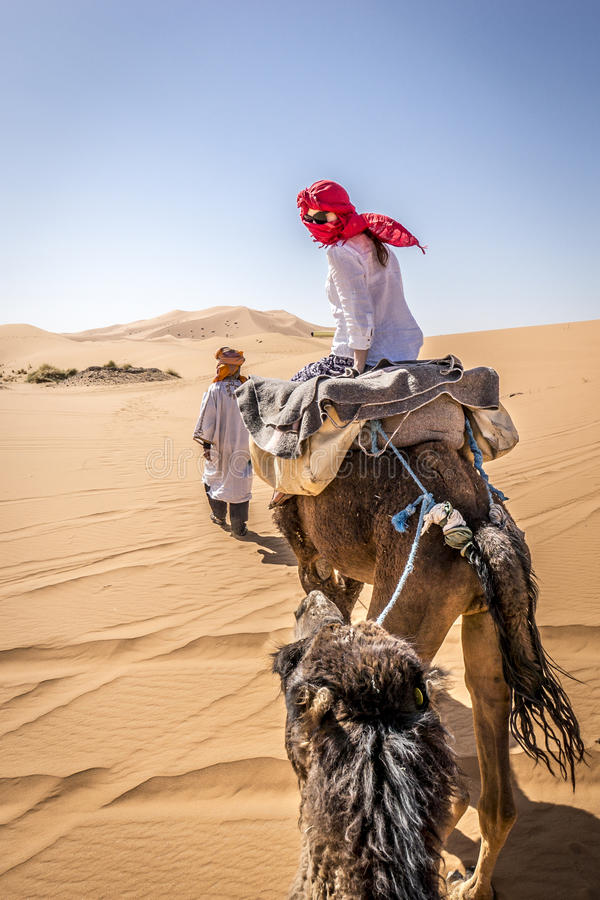 A Girl Riding A Camel Stock Photo Image Of Young Female