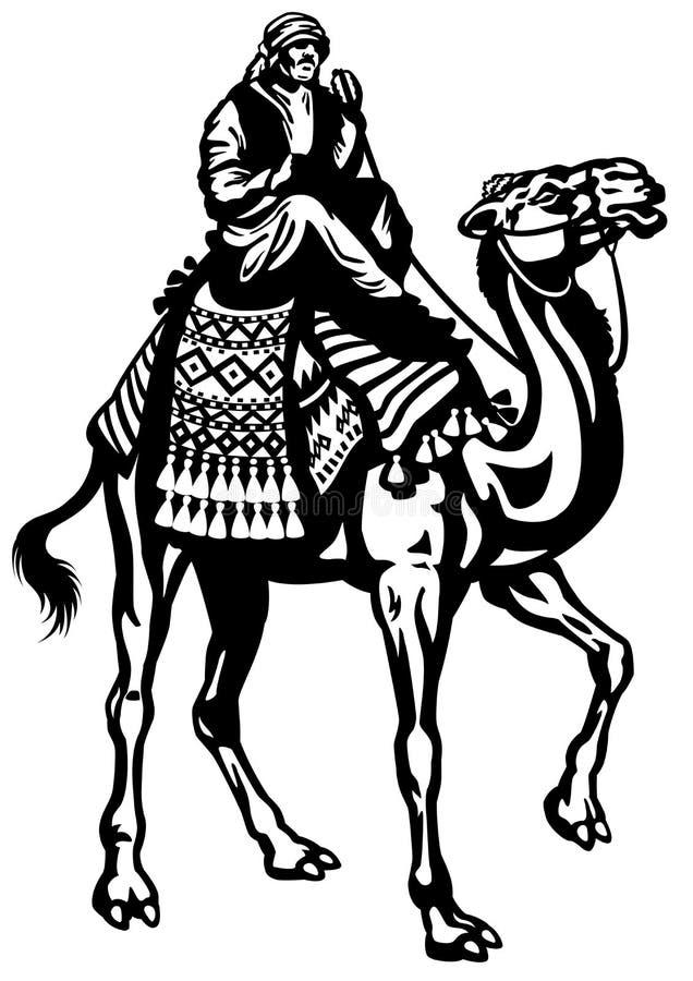 Camel rider black white vector illustration