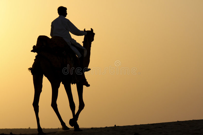 Download Camel rider silhouette stock image. Image of sunset, silhouette - 6677521