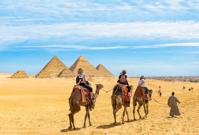 Camel riding near the pyramids royalty free stock photos